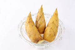 Winter bamboo shoots Royalty Free Stock Image