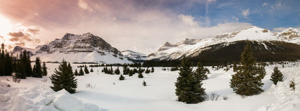 Winter in Banff National Park Stock Images