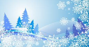 Winter banner with snowflakes and blue conifers Royalty Free Stock Image