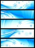 Winter Banner, Vector Stock Photos