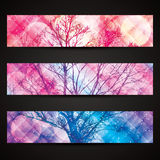 Winter banners with lighting effect Royalty Free Stock Photography