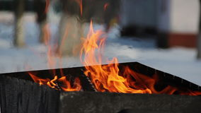 Winter barbeque fire stock video footage