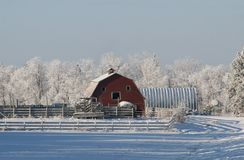Winter Barn. A red barn in a winter farmyard Stock Image