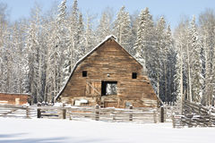 Winter barn Stock Image