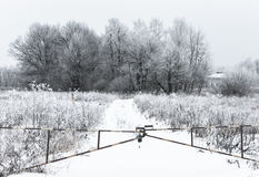 Winter barrier gate Stock Photography