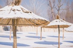 Winter on the beach with frozen snow on the sand and parasol. Or sunshades Royalty Free Stock Photo