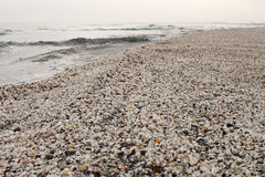 Winter beach of shells at black sea. Winter grey beach of shells at black sea Royalty Free Stock Image