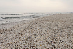 Winter beach of shells at black sea. Winter grey beach of shells at black sea Stock Image