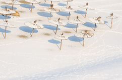 Winter on the beach. Snow on the sand and parasol. Sunshades covered by snow and ice. Royalty Free Stock Photography