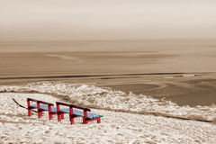 Winter beach view and red benches Royalty Free Stock Photo