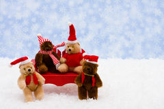 Winter Bears Royalty Free Stock Image