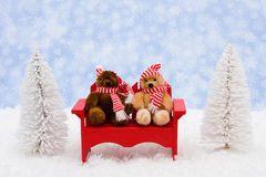 Winter Bears Stock Photography