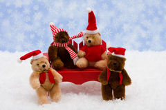 Winter Bears Royalty Free Stock Images