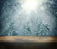 Winter beautiful Christmas background Stock Photos