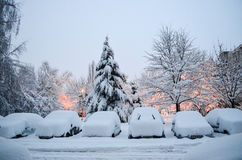 Winter Stock Images