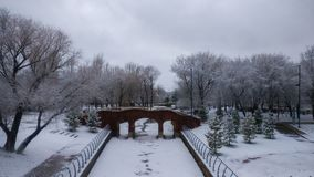Winter beautiful park landscape stock photo