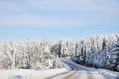 Winter beautiful scene Royalty Free Stock Image