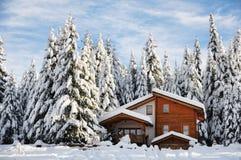 Winter beautiful scene Stock Photos