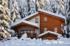 Winter beautiful scene Stock Image