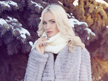 Winter beautiful young Woman in Fur Coat Stock Photo