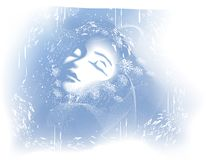 Winter Beauty Face of Woman Stock Photography