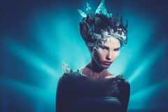 Winter beauty fantasy woman portrait. Royalty Free Stock Photography