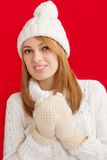 Winter Beauty Girl Royalty Free Stock Photography