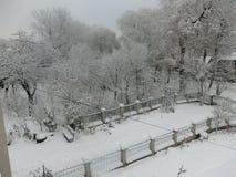 Winter beauty. Landscape, snow, snowing, garden Stock Images