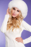 Winter beauty - portrait of a young woman. Stock Photo