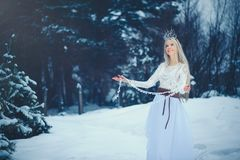 Winter Beauty Woman. Beautiful fashion model girl with snow hairstyle and makeup in the winter forest. Festive makeup and manicure. Winter Queen with snow and stock photos