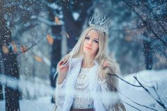 Winter Beauty Woman. Beautiful fashion model girl with snow hairstyle and makeup in the winter forest. Festive makeup and manicure. Winter Queen with snow and stock images