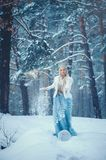 Winter Beauty Woman. Beautiful fashion model girl with snow hairstyle and makeup in the winter forest. Festive makeup and manicure. Winter Queen with snow and stock photo
