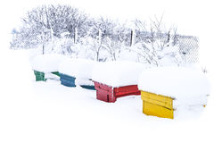 Winter bee hives Stock Image