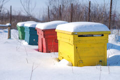 Winter bee hives Stock Images