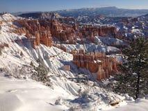 Winter bei Bryce Canyon lizenzfreies stockbild