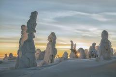 Winter bei Lappland Lizenzfreie Stockfotos