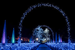 Winter-Beleuchtung in Japan Lizenzfreie Stockfotos