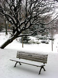 Winter bench 1 Stock Image
