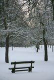 Winter bench. Peaceful and calm winter atmosphere in a snowy park royalty free stock photos