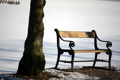 Winter bench. Bench in denmark royalty free stock photography