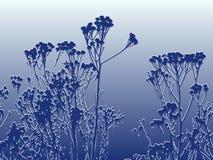 Winter bereifte Anlagen Lizenzfreies Stockfoto