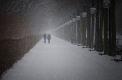 Winter in Berlin City Park with walking People Royalty Free Stock Photography