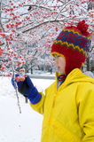 Winter Berries 2. A well-bundled girl looks at some snow-clad red berries on a winter day Royalty Free Stock Image