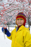 Winter Berries 3. A well-bundled girl on a winter day smiles as she holds a branch of snow-covered berries Stock Images