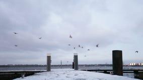Winter berth stock footage