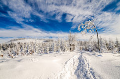 Winter on Beskidy Mountains stock photography