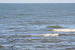 Winter bewegt auf den Eriesee wellenartig Stockbilder