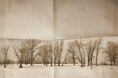 Winter bg Stock Photography