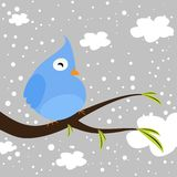 Winter bird Royalty Free Stock Images