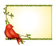 Winter Bird Holly Branch. An illustration featuring a red bird like a cardinal sitting on a holly branch against a light gold and holly background stock illustration